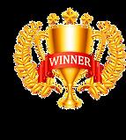 Winner champion trophy.png