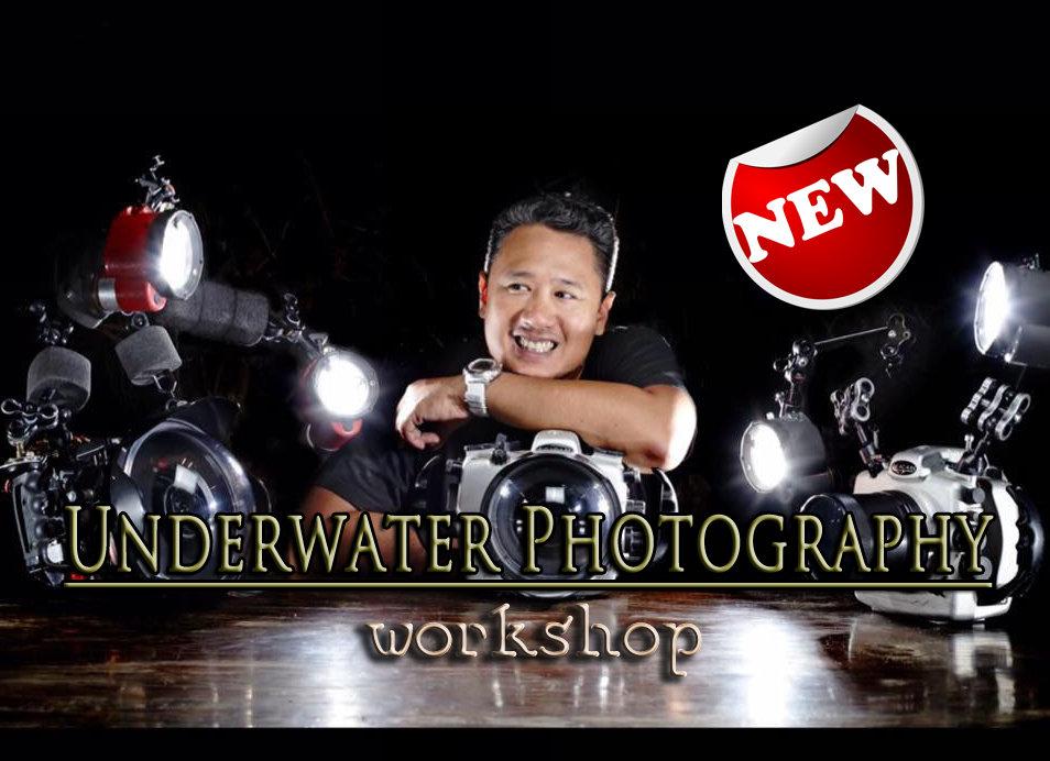 Underwater Photography Workshop