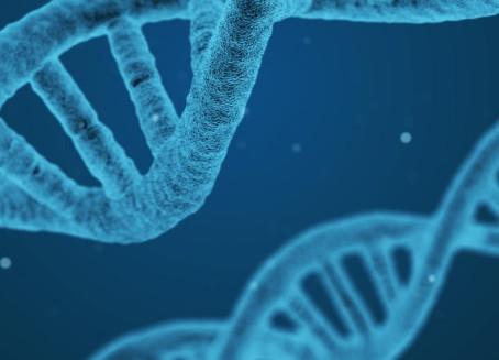 Jeudi rétrospectif | Découverte de l'ADN