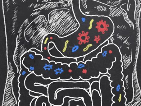 Article 9 |  Les probiotiques, c'est automatique !