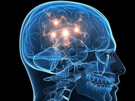 Article 5 | À la découverte d'une nouvelle thérapie pour la maladie de Parkinson