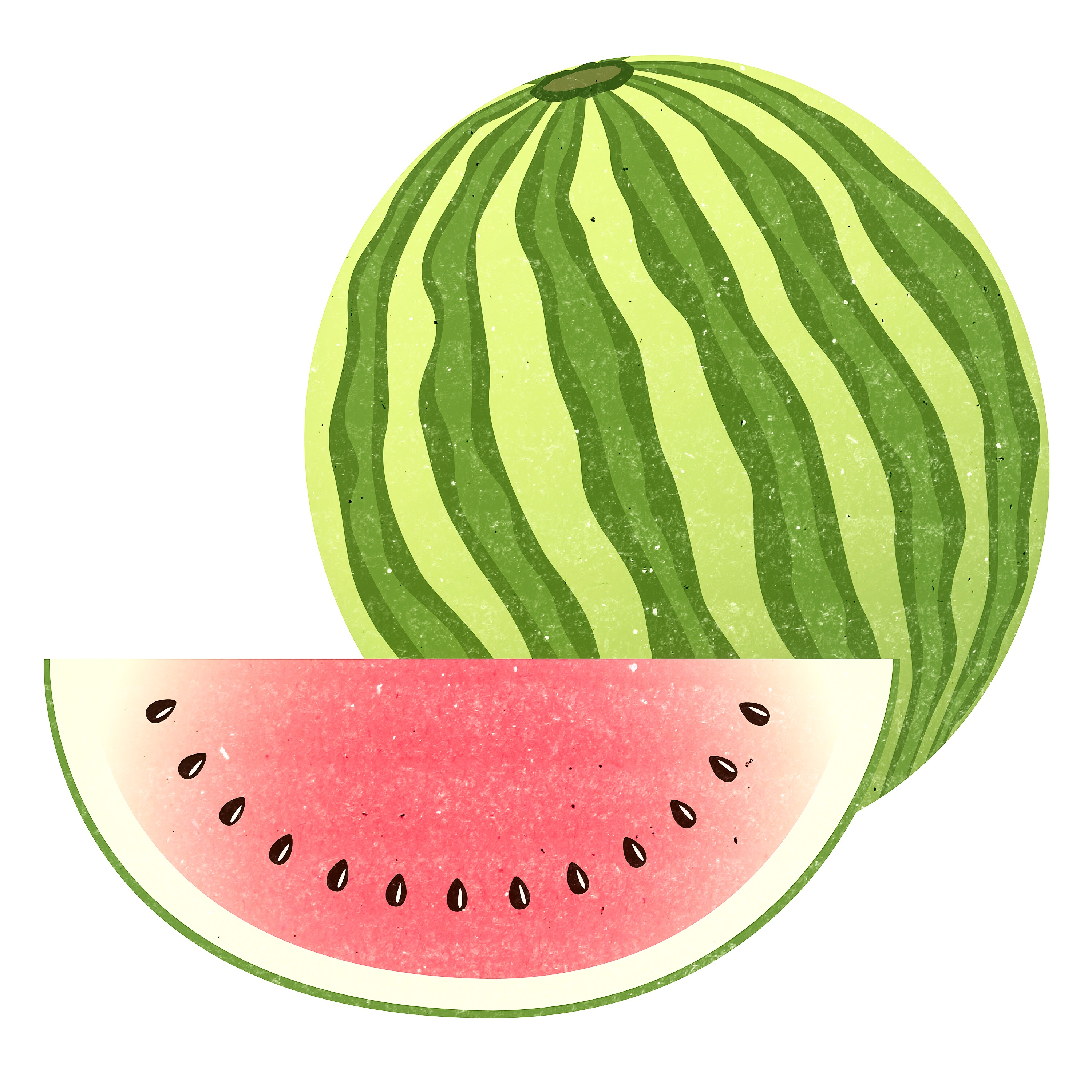MELONEN ILLUSTRATION
