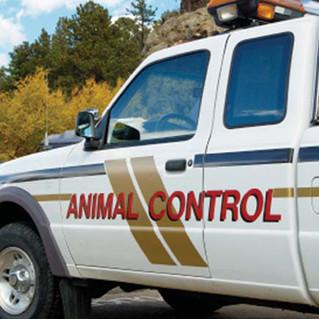 Animal Control Info
