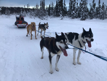 Fairbanks: The Magic of Interior Alaska