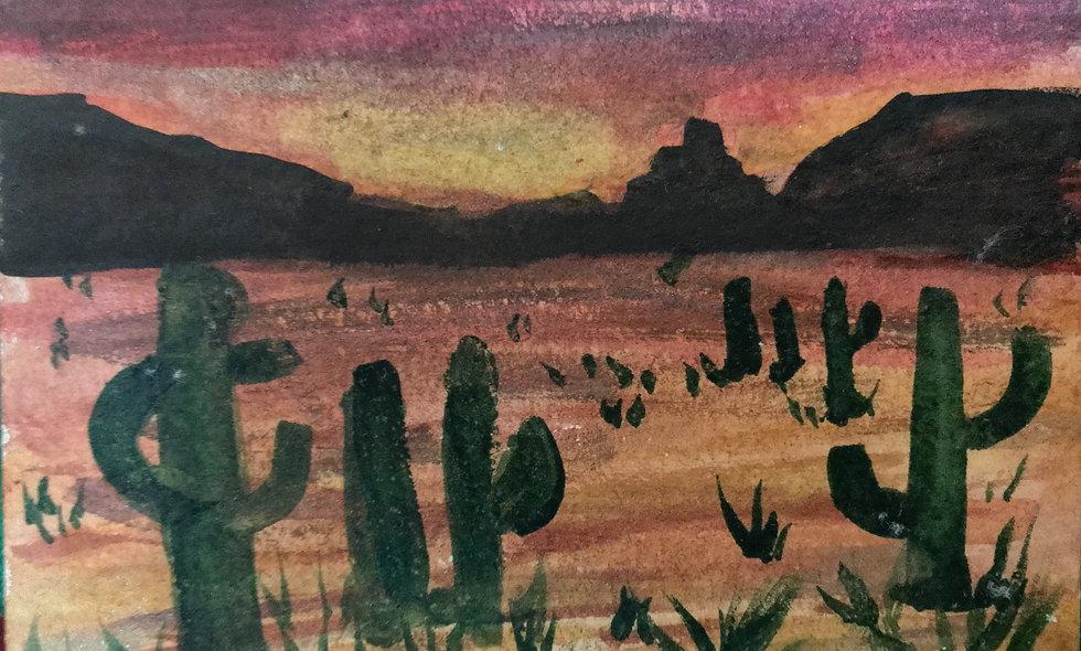 National Park Series: Saguaro National Park