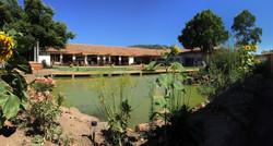 Jardines con Laguna
