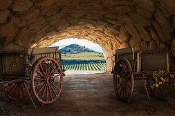 hotel del vino casablanca-chile