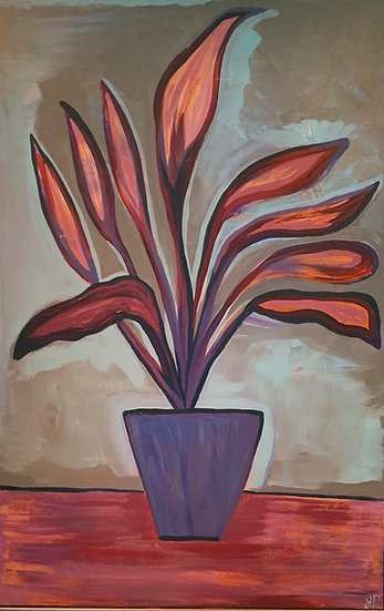 warm potted plant