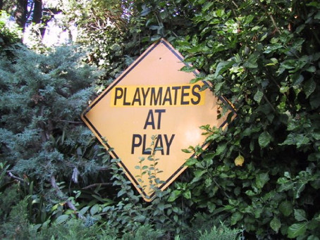 Pay me to go to the Playboy Mansion? Say what??