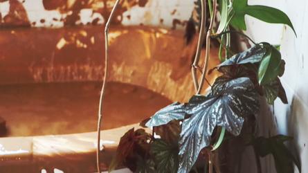 May Okafor, still from performance, 2019
