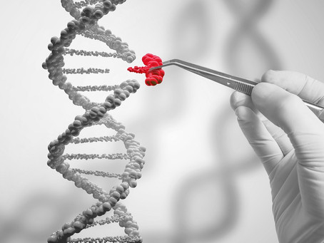CRISPR / Cas9: Die Zukunft der Medizin?