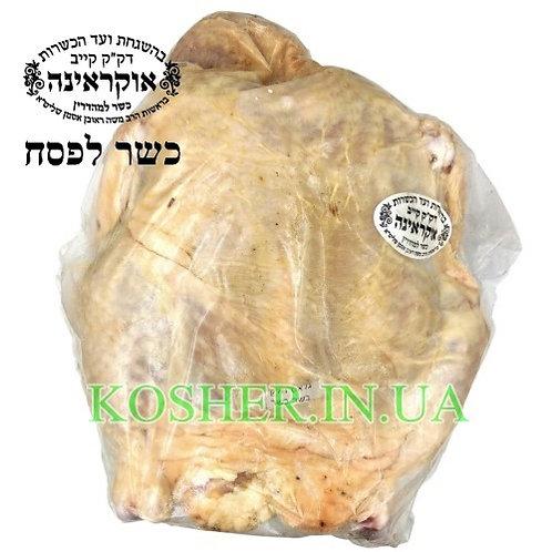 Курица (тушка) кошер на ПЕСАХ в/у, Бродский, кг