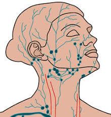 lymph face.jpg
