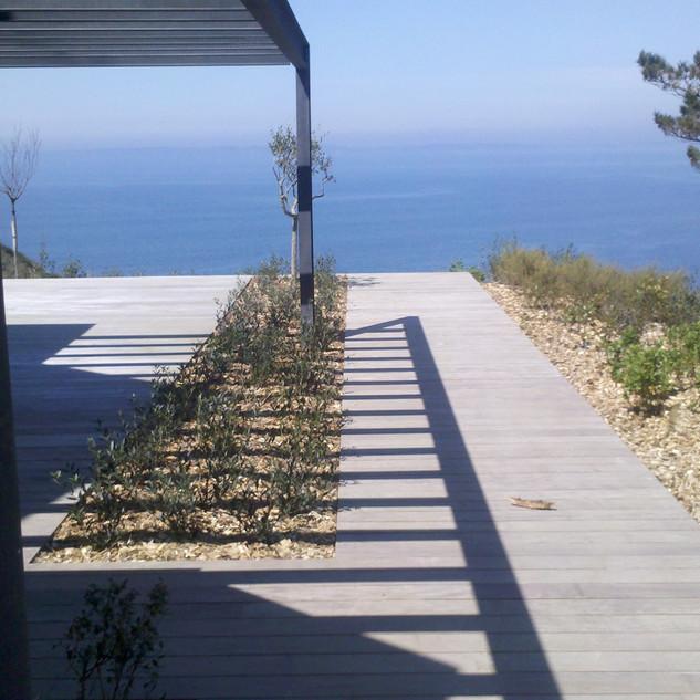 Terrasse bois et plantations