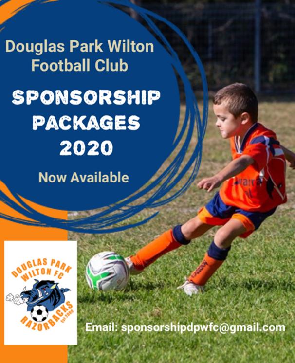 sponsorship flyer.png