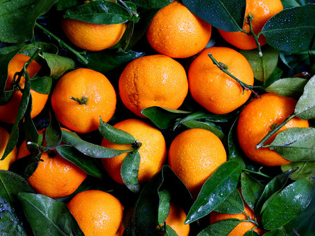 3 Reasons You Should Be Taking Vitamin C: The Beauty Vitamin for Your Skin