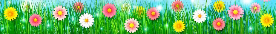 Spring Background 4.jpg