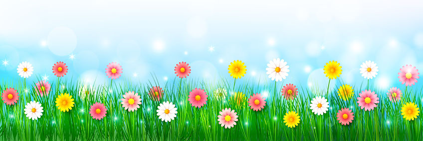Spring Background 007.jpg