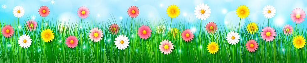 Spring Background 1.jpg