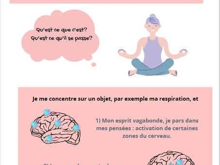 La méditation et mon cerveau : comment ça fonctionne?