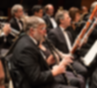 Montgomery County orchestra