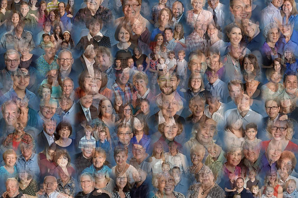 Merged Collage.jpg