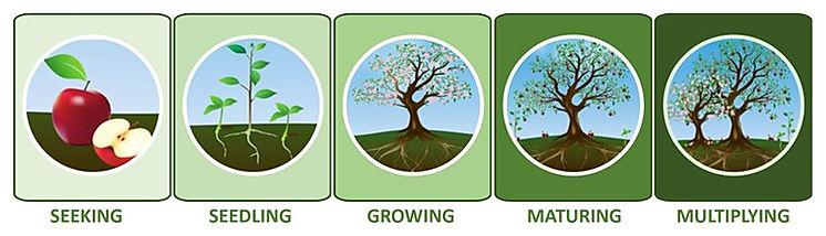 Spiritual Growth Model