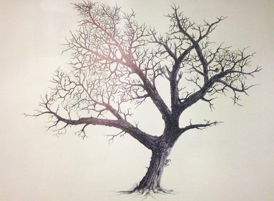 tree8_edited.jpg