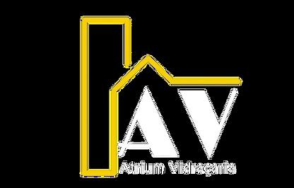 AV-removebg-preview.png