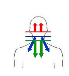 douleur projeté cervicale