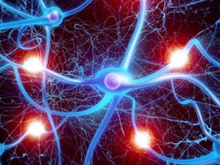 """La chiropraxie: l'art de """"nettoyer"""" le système nerveux."""
