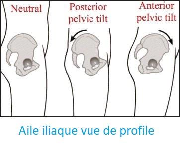 bascule anterieur et posterieur du bassin chiropracteur paris