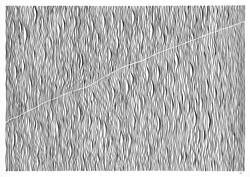 Rise [Crossing Lines] 2021 Nic Gear.jpg