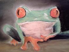 Red Eyed Tree Frog - Martin Bond.jpg