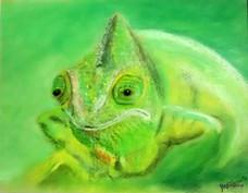 Chameleon - Martin Bond.jpg