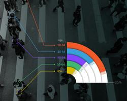 Survey Infographics Design