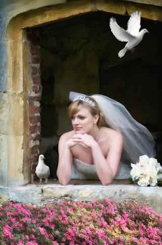 Bridal Portrait San Diego, CA