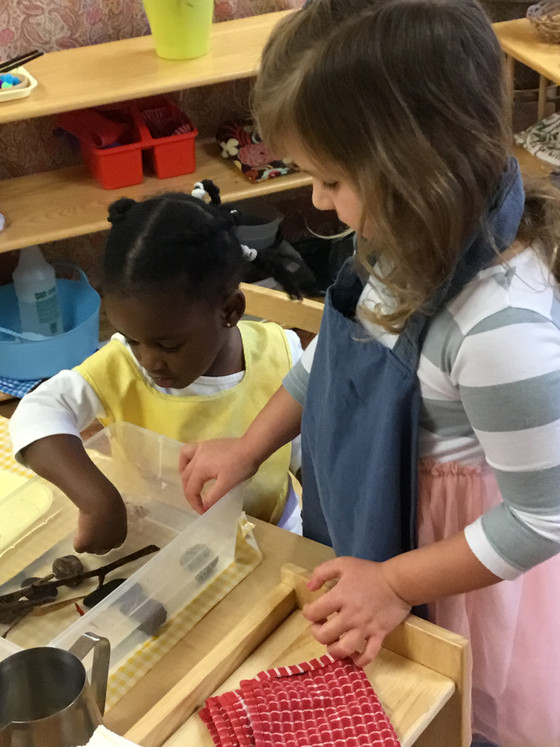 From Creeping to Leaping: A Montessori Child's Kindergarten Year