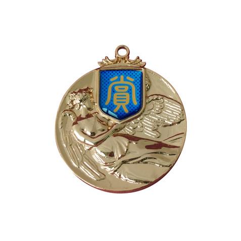 VSメダル
