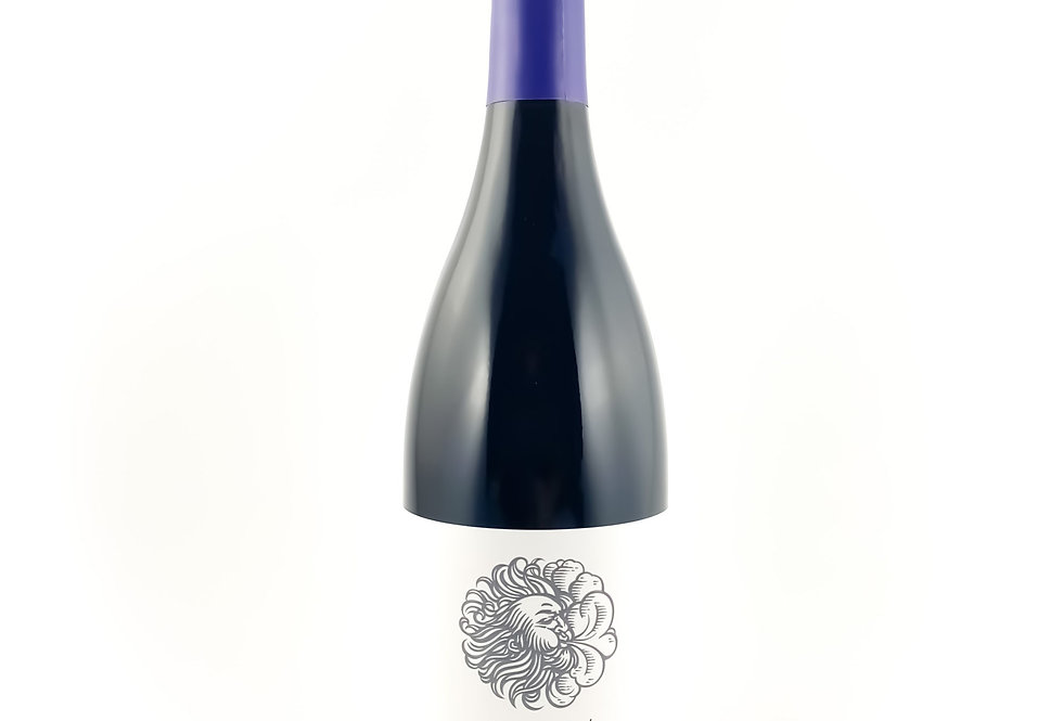 Waterkloof Seriously Cool Cinsault 2019