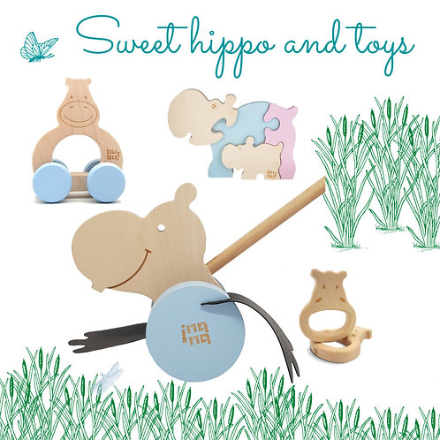 push along toys, wooden push along toys, baby wooden toys,wooden toys,push along for toddlers,baby wooden toys,ring teether