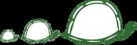 3 Tortoise tspt.png