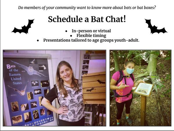 Schedule a Bat Chat .png