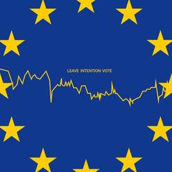 Referendum Analysis