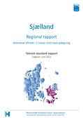 Regionsrapport 1. halvår 2020 med opfølgning Sjaelland forside.png