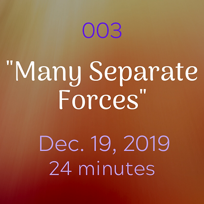 "003 ""Many Separate Forces"".mp3"