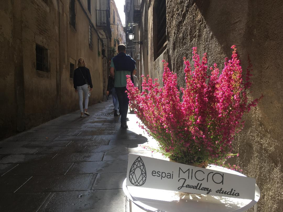 Calle Rosic