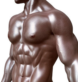 bodybuilder-331670_960_720.jpg