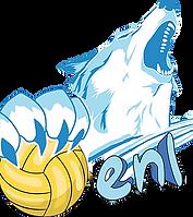 enl water-polo