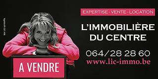 logo lic.png